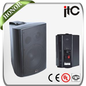 ITC-Audio Professional Wall Speakers